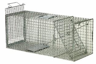 Safeguard� Standard Rear Release Cage Trap 52818SRR